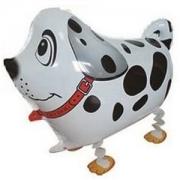 Шар (24''/61 см) Ходячая Фигура, Собака далматин, Белый, 1 шт.