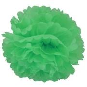 Помпон, Зеленый (16''/41 см) 1 шт.